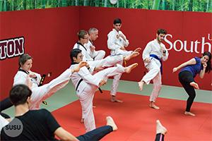 Kung Fu Training Session
