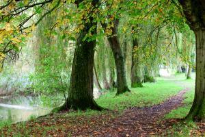 Winchester Walk: Winnall Moors & St Giles Hill